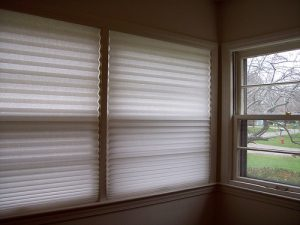 instant paper blinds