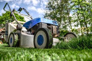 maintain gardens in empty properties